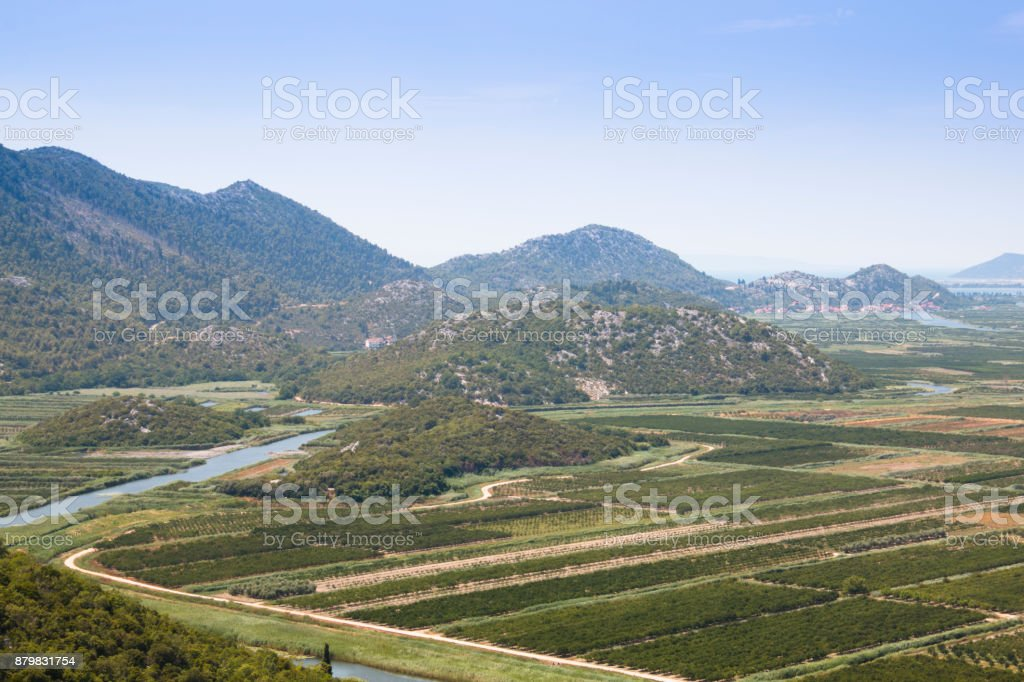 View over the vineyards near Dubrovnik, Croatia stock photo