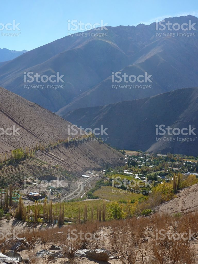 View over the vineyards of the Elqui Valley, Chile stock photo