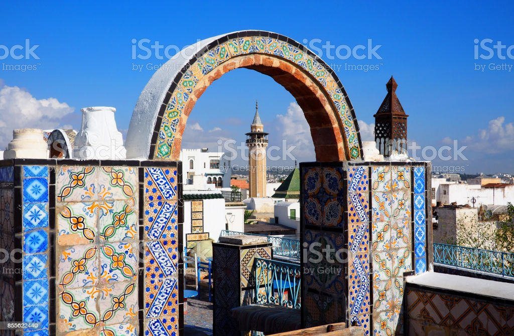 View over Tunis skyline with famous mosque stock photo
