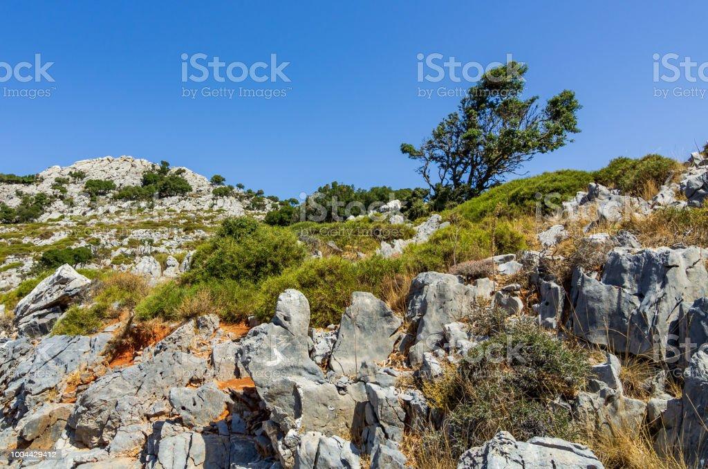 Blick über weißen Felsen und Büschen von Lasithi – Foto