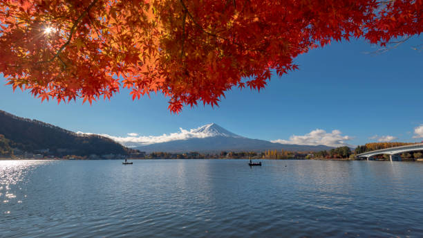 View pf Mount Fuji and Kawaguchiko lake during fall season View pf Mount Fuji and Kawaguchiko lake during fall season, autumn collection lake kawaguchi stock pictures, royalty-free photos & images