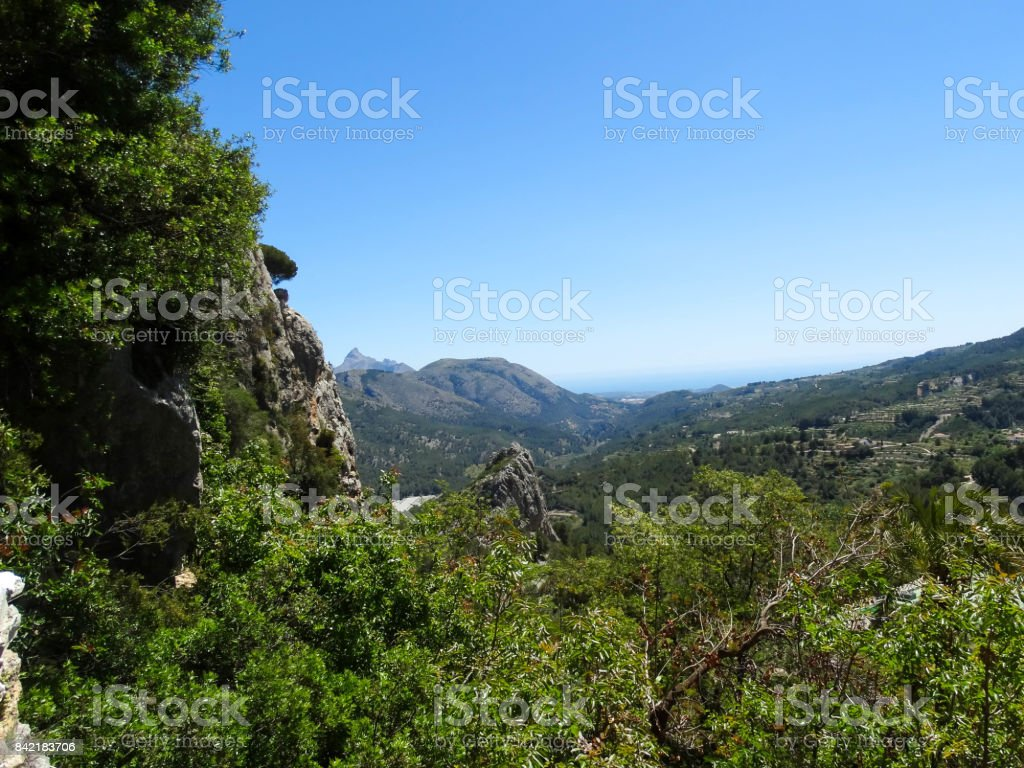View stock photo