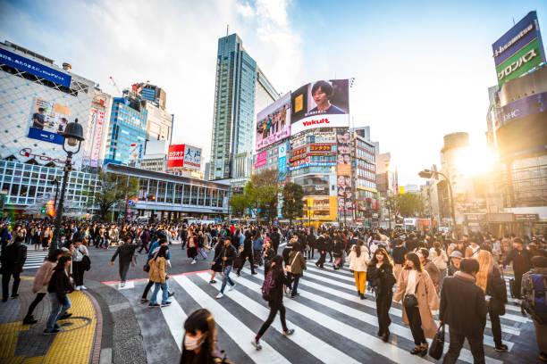 夕暮れ時の渋谷交差点を見る 東京2020日本 - 街 日本 ストックフォトと画像