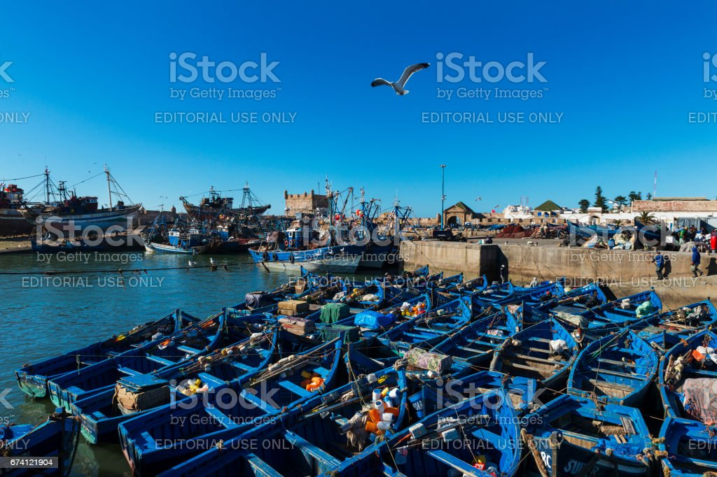 View the fishing harbour of Essaoira with the traditional fishing boats in the Atlantic Coast of Morocco, Northern Africa. 免版稅 stock photo