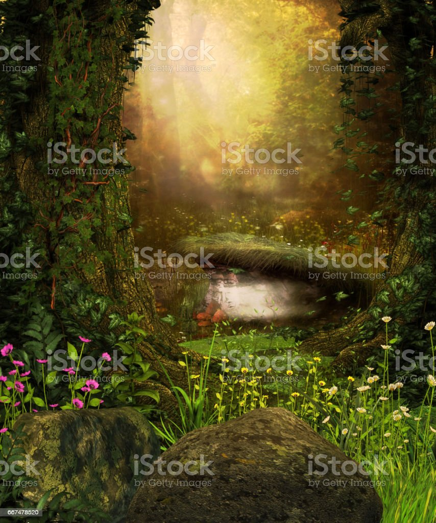 View through a dark forest stock photo