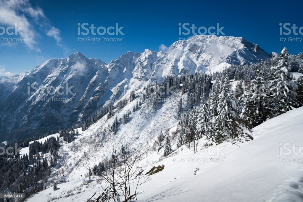 View to Austrian Alps from Rossfeldstrasse royaltyfri bildbanksbilder