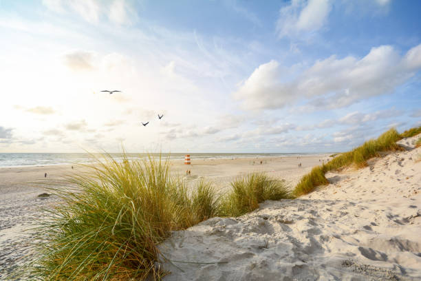 Blick auf die wunderschöne Landschaft mit Strand und Sanddünen in der Nähe von Henne Strand, Nordseeküstenlandschaft Jütland Dänemark – Foto