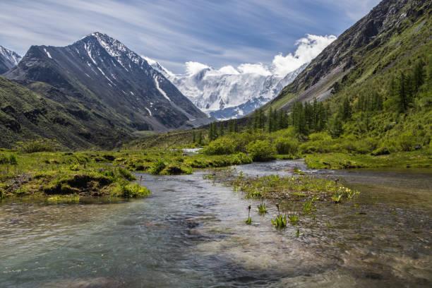 Blick auf Beluha Berg aus dem Akkem-Tal im Sommertag, Altai, Russland – Foto