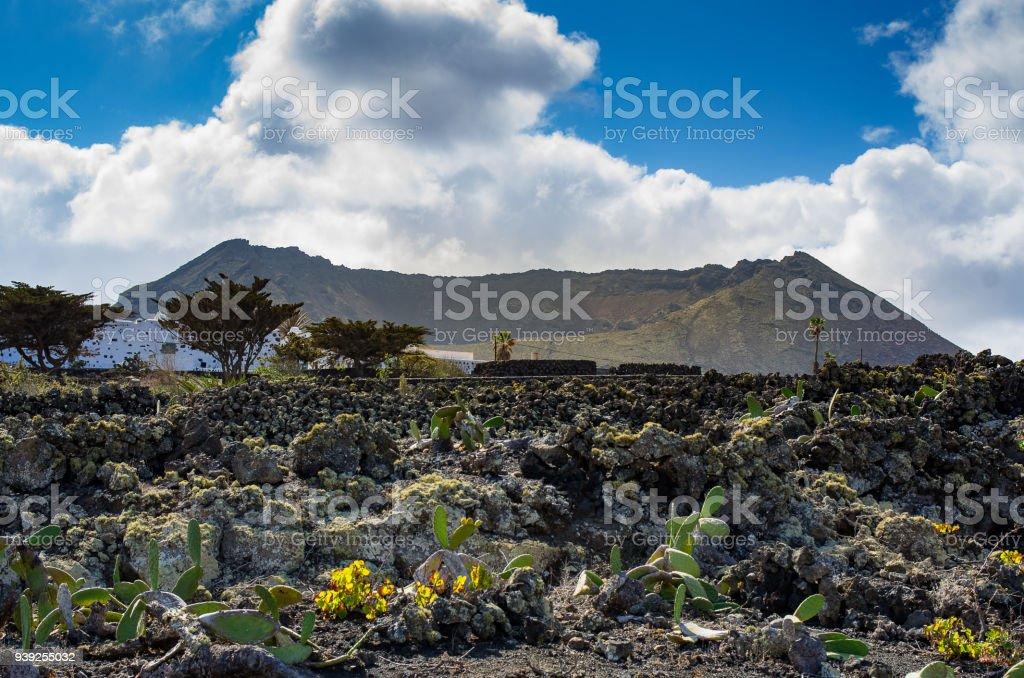 Blick auf Caldera la Corona in der Nähe von Ye, Lanzarote – Foto