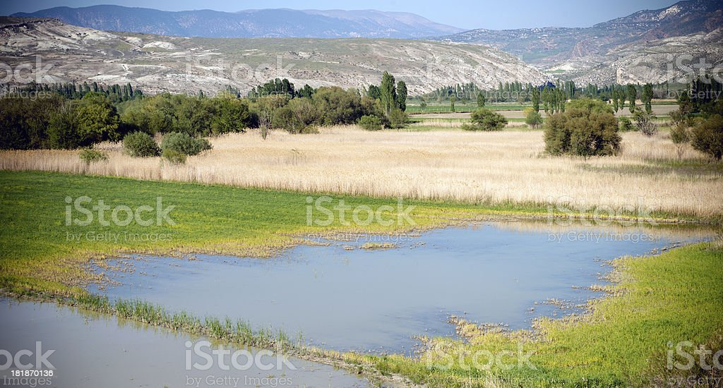 View to field by the lake. royalty-free stock photo