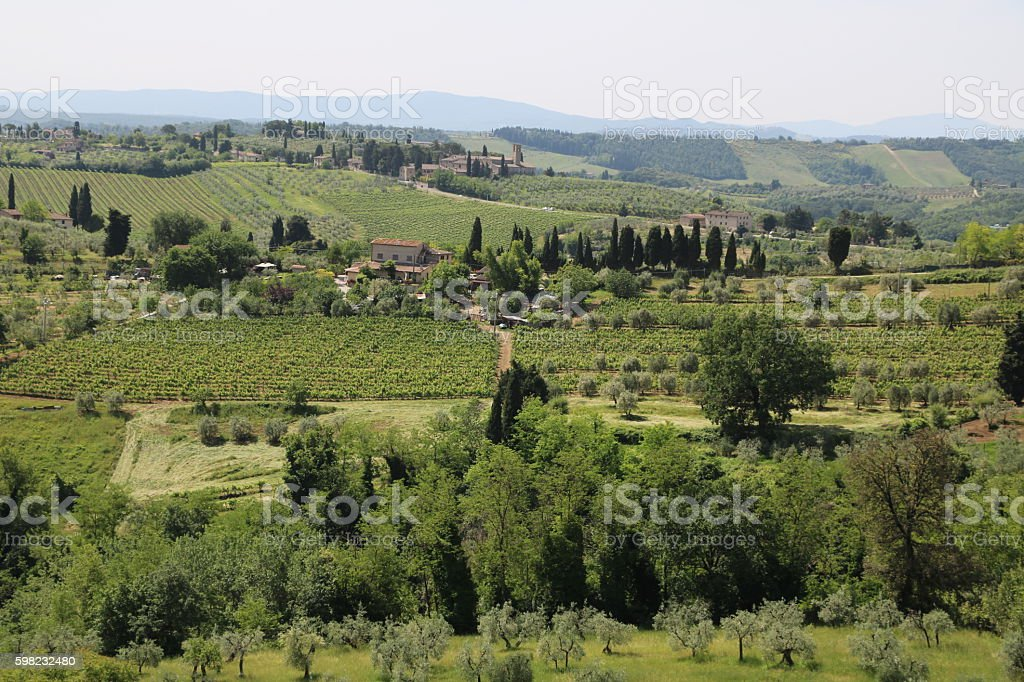 View to green landscape of Tuscany from San Gimignano, Italy foto royalty-free