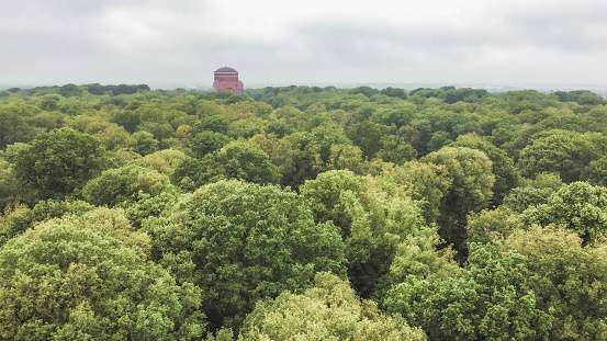View to Hamburg Planetarium behind the tree crowns