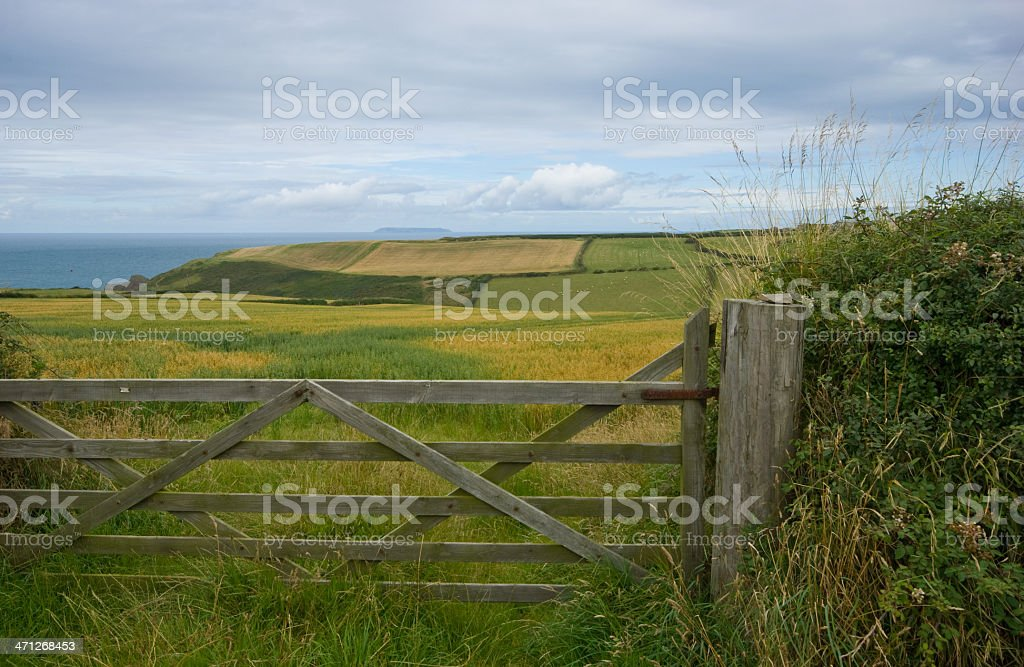 View to Lundy Island across fields stock photo