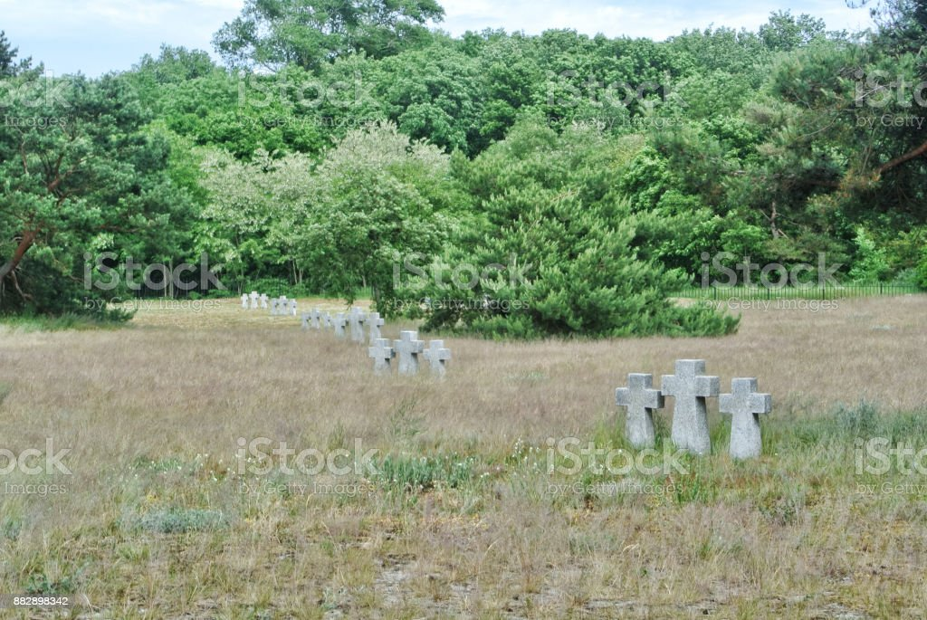 A view to old stone crosses and trees in the dry autumn grass at the old German cemetery of the Second World War at the city of Baltiysk, Kaliningrad region, Russia. stock photo