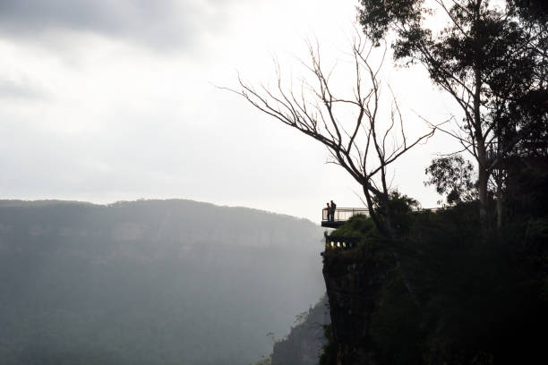 View to Spooners Lookout with leafless tree at the Three Sisters in the Blue Mountains, Katoomba, New South Wales, Australia stock photo