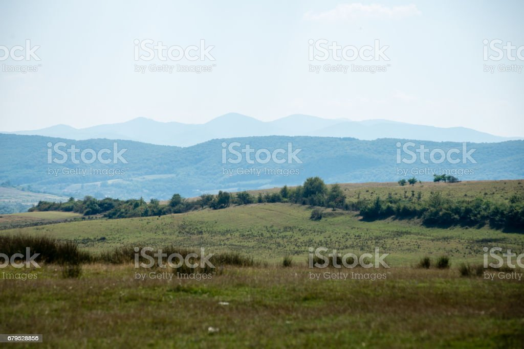 View to the carpathian mountains from forest royalty-free stock photo