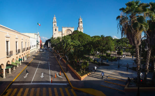 View to the cathedral of Merida over the main square park 'Plaza Grande' in Merida, Yucatan, Mexico stock photo