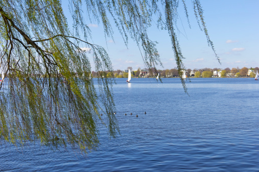 View to the Outer Alster in Springtime