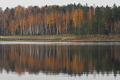 View to the yellow colored autumn forest in Ogre Zilie Kalni (Blue Hill) Nature Park over Dubkalni Reservoir with the beautiful reflections in the water