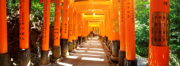 View to Torii gates in Fushimi Inari Shrine KYOTO, JAPAN - APRIL 19: View to Torii gates in Fushimi Inari Shrine on April 19, 2018 in Japan. Famous place in Kyoto, Japan torii gate stock pictures, royalty-free photos & images