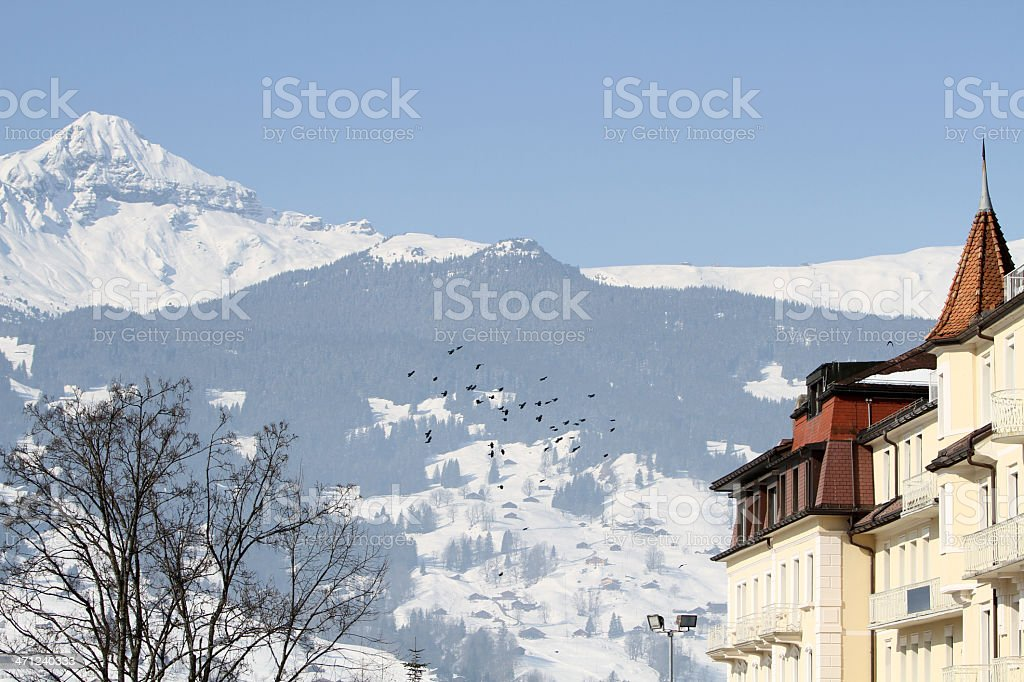View towards the Shrekhorn mountain from Grindlewald, Switzerland stock photo