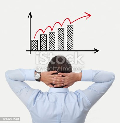 168589045 istock photo viewing on the diagram 480680543