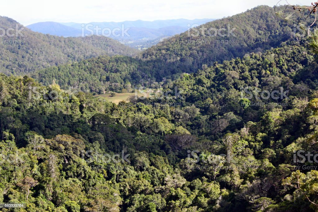 Viewpoint landscape in Kondalilla National Park stock photo