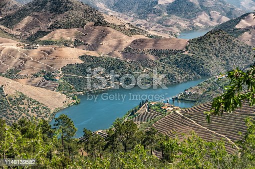 Viewpoint of Vargelas allows to see a vast landscape on the Douro and its man-made slopes. Douro Region, famous Port Wine Region, Portugal