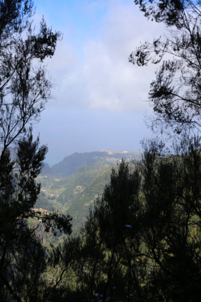 Views from Calheido Verde Levada: Mountains, Clouds and Some Trees stock photo