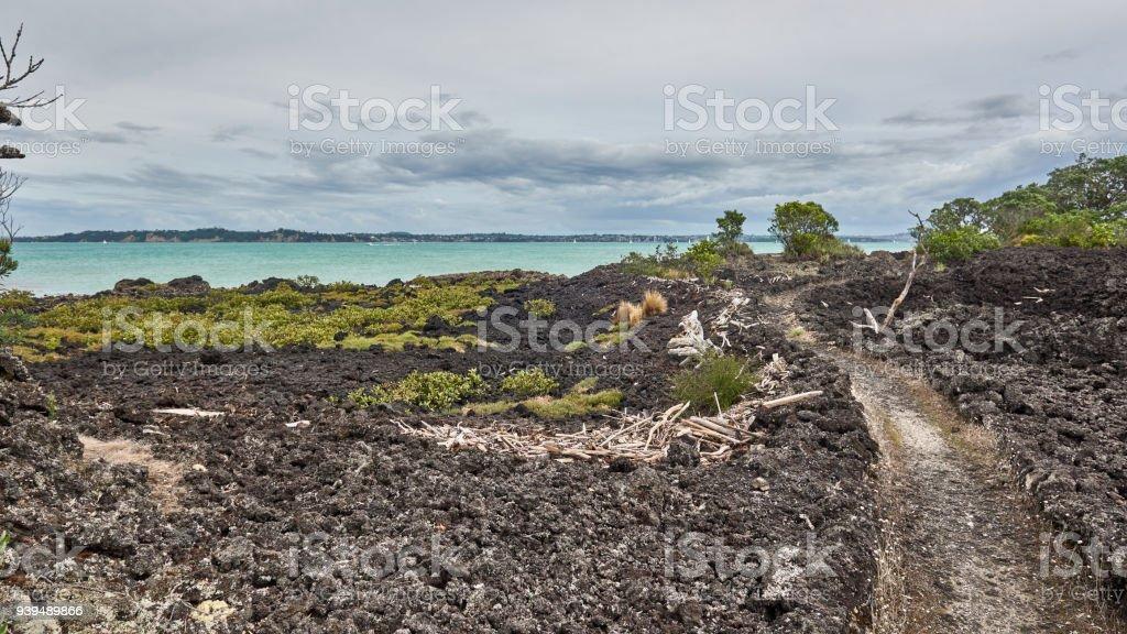 Views from the Coastal Track close to the Rangitoto wharf on Rangitoto island New Zealand stock photo