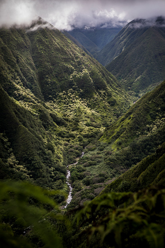 View from Waihee Ridge Trail, looking up the valley to the West Maui Mountains, Hawaii
