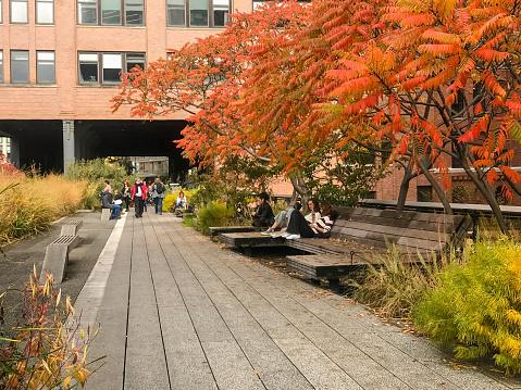 NYC, New York - November 30, 2019: Views of New York City's High Line pedestrian walkway