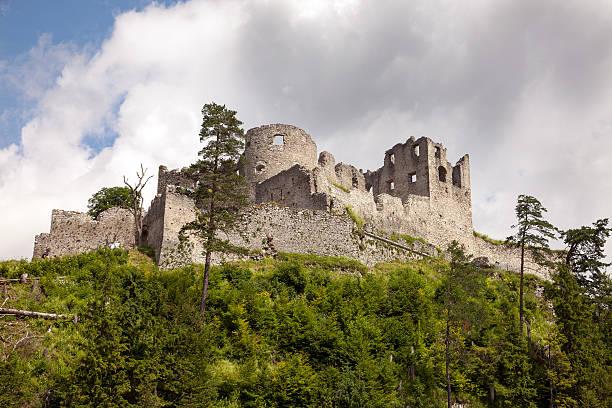 views of the ehrenberg castle ruins, austria - pflaumen wände stock-fotos und bilder