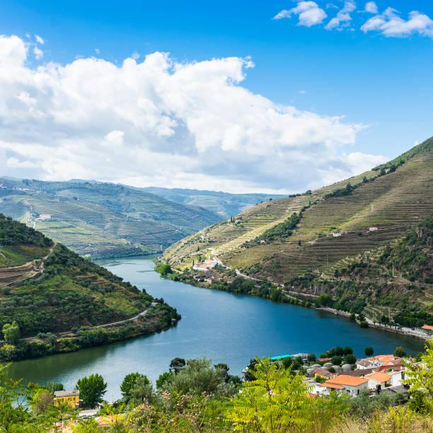 views of the portuguese nature - douro imagens e fotografias de stock