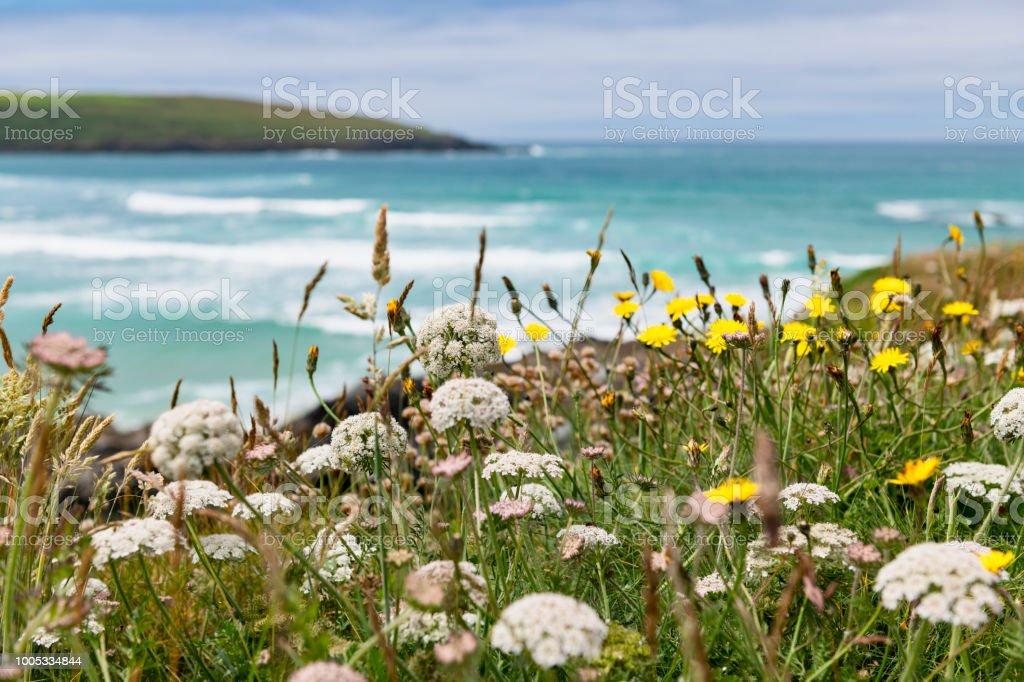 Views Over Crantock Beach, Newquay, Cornwall. stock photo