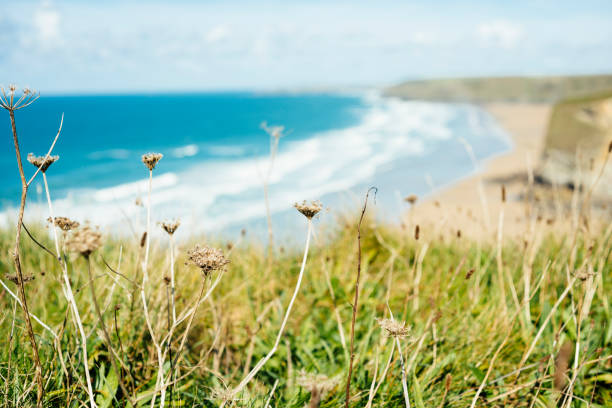 views over the bright sunny cornish coast at newquay, cornwall. - cornwall stock photos and pictures