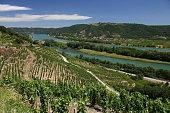 Vignoble Vignes Chapelle Vallée du Rhône Côtes du Rhône Drôme Provence France