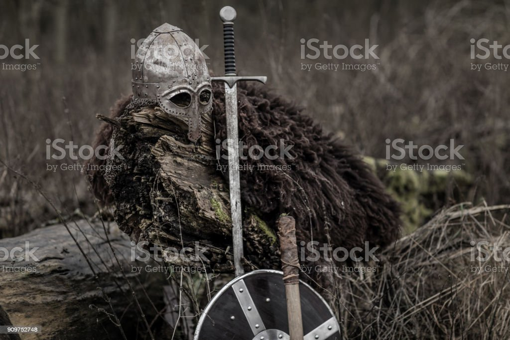 Viking equipment in a winter forest stock photo