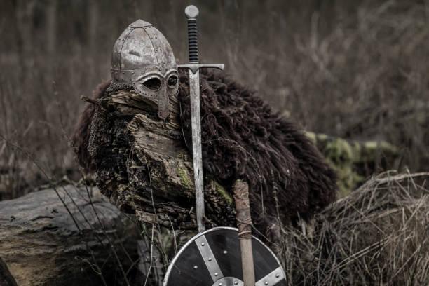 viking equipment in a winter forest - tarcza broń zdjęcia i obrazy z banku zdjęć