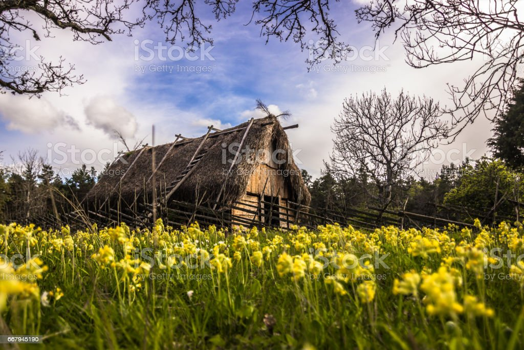 Gotland - May 17, 2015: Viking home in Gotland, Sweden stock photo