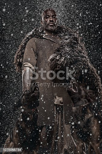 Viking inspired black warrior with guard dogs in a blizzard