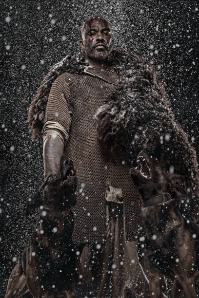 viking inspired black warrior in a blizzard - indumento corazzato foto e immagini stock