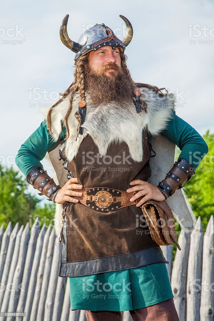 Viking on his territory stock photo
