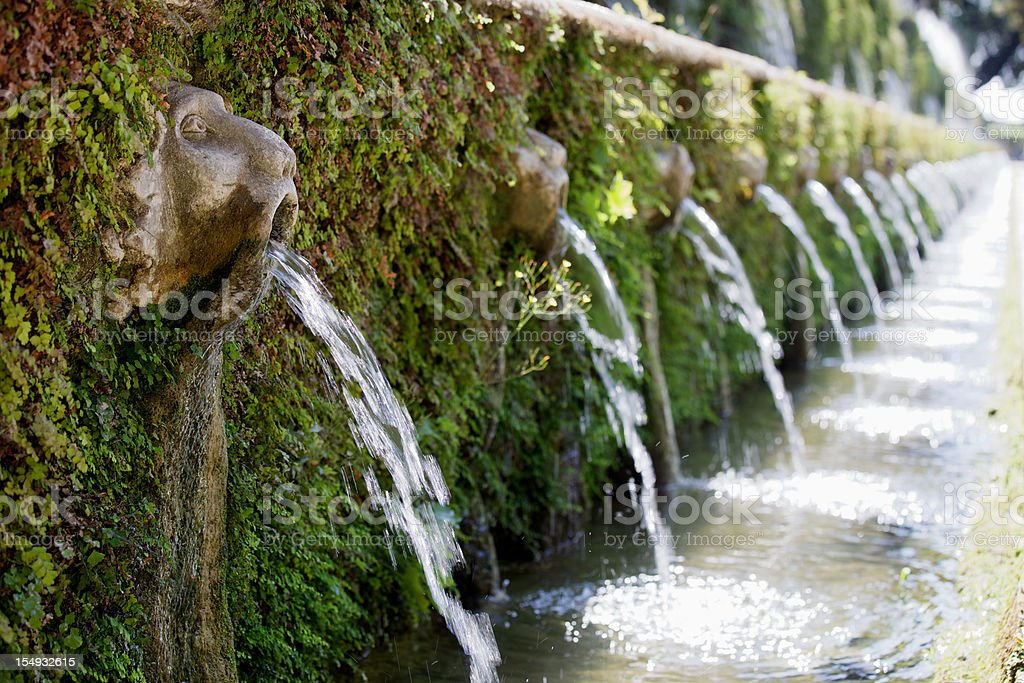 Villa D'Este Gardens stock photo