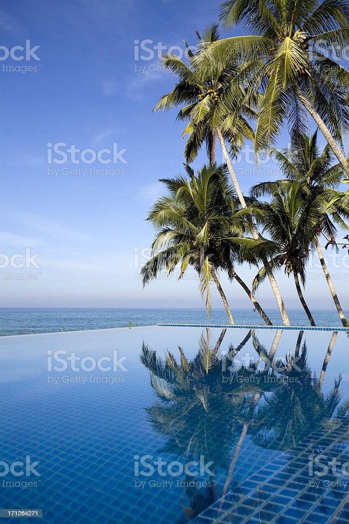 villa hotel swimming pool sri lanka royalty-free stock photo