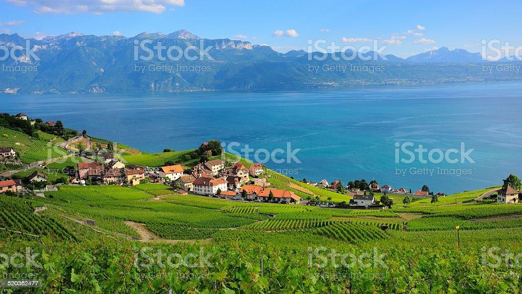 Village am Ufer des Genfer Sees in Lausanne – Foto
