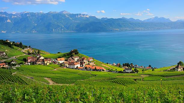 village beside the lake geneva in lausanne - lake geneva stock photos and pictures