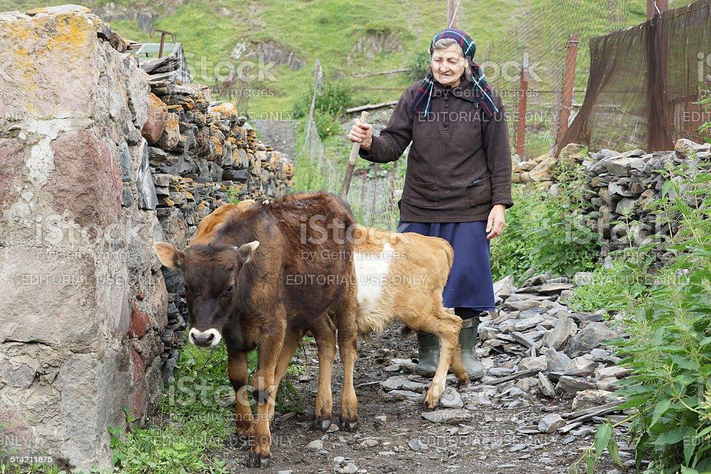 Village, Caucasus Mountains, Georgia stock photo