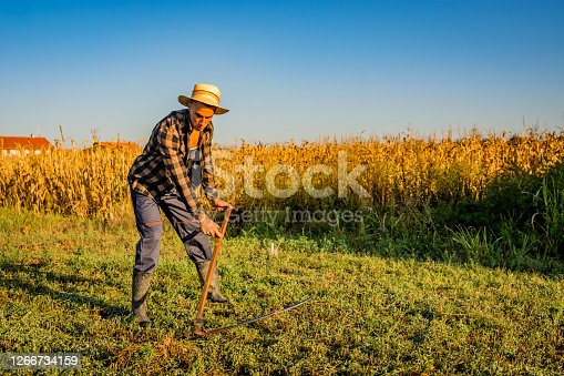istock Village country man on summer meadow mowing grass with classic scythe 1266734159