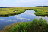 Village Creek is a series of canals winding through the marshes, eventually flowing into the Atlantic Ocean.